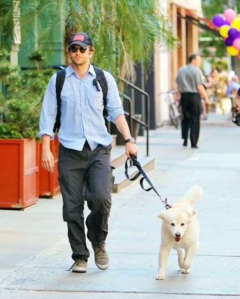 hollywood celebrities with dogs,Ben Affleck,David Beckham,Orlando Bloom,Justin Timberlake,Robert Pattinson,Bradley Cooper,Hugh Jackman,Channing Tatum,Liam Hemsworth,Josh Hutcherson