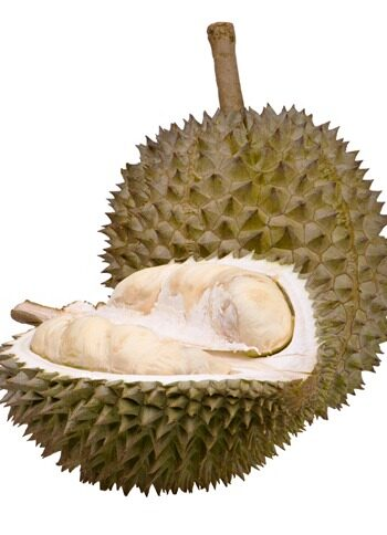 Durian wine and dine tips